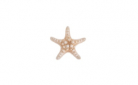 Beach Wedding Natural Starfish Sea Star Hair Clip Hair Accessories, 5.95, Groupon,